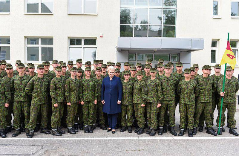 Grybauskaite announced that Lithuania will not switch to NATO financial standards in 2020, but in 2018.