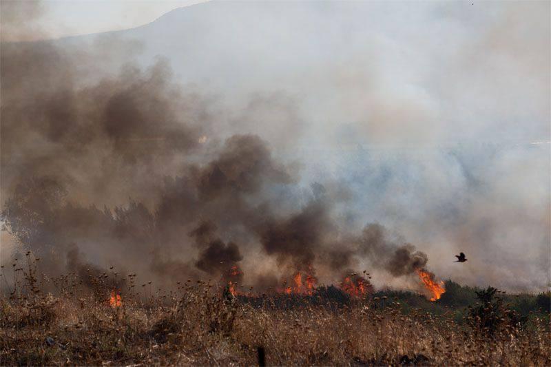 इजरायली सैनिकों ने सीरियाई सरकारी सेना के ठिकानों पर हमला किया