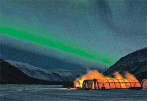 Ártico brilhante