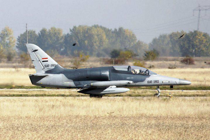 Le premier avion tchèque L-159A est arrivé en Irak