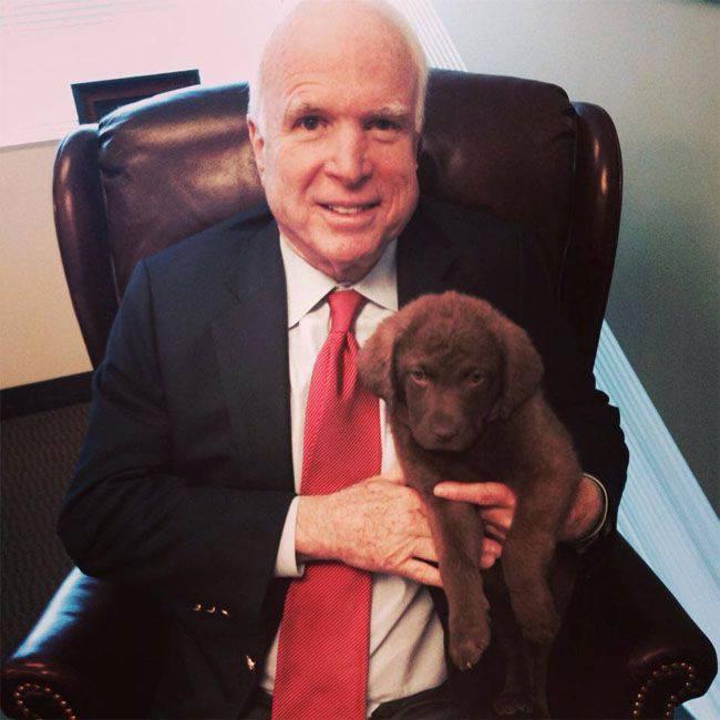 McCain fordert, die Beschaffung von Raketentriebwerken in Russland einzustellen