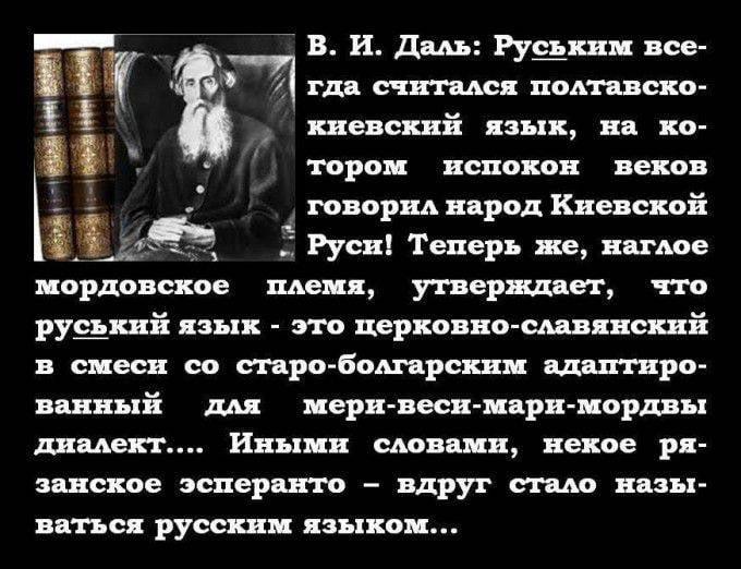 마침내 우크라이나의 미친 불행한 사람들을 몰아냅니다.