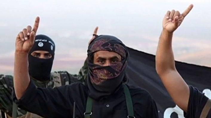 外交部外交事务部:加沙-努斯拉武装份子从土耳其进入叙利亚