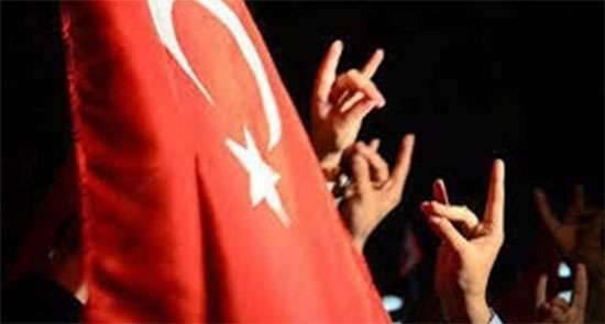 """मीडिया: तुर्की समूह """"ग्रे वोल्व्स"""" यूक्रेन में आतंकवादियों के हमले और क्रीमिया में तोड़फोड़ के लिए आतंकवादियों को प्रशिक्षित करता है"""