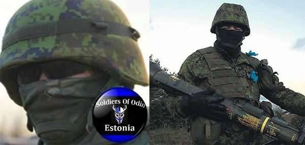 """Estnische Behörden: """"Russland kann die wachsende Anti-Migranten-Bewegung"""" Odins Soldaten """"finanzieren"""