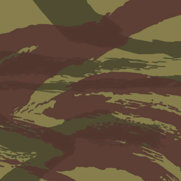 Modern camouflage: the principles of creation, species, prospects. 3 part
