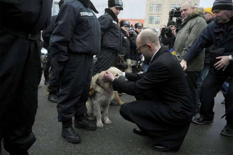 "Yatsenyuk, ""투명한""경매에서 백만 헥타르의 우크라이나 땅 판매"