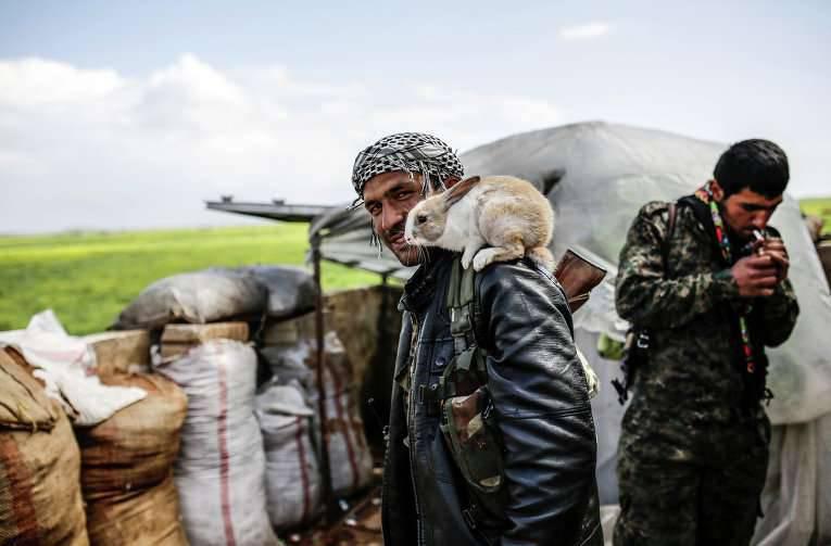 Nordkantone syrischer Kurden können eine Föderalisierung erklären