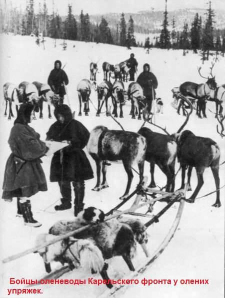 Unutulmuş savaşlar. Murmansk taarruz operasyonu