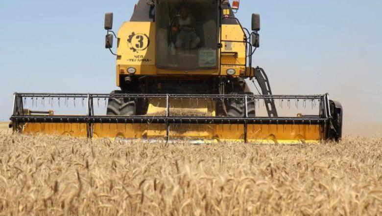 Советники украинского премьера предлагают снять мораторий на продажу  сельскохозяйственных земель