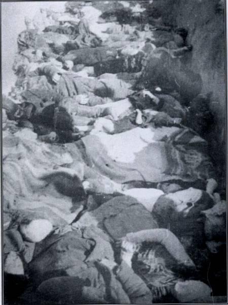 Польский Сенат принял резолюцию о признании преступлений на Волыни геноцидом в отношении польского населения