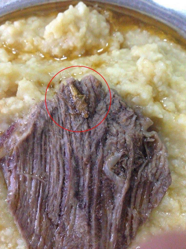 Бирюков о червяках и тараканах в еде украинских военнослужащих