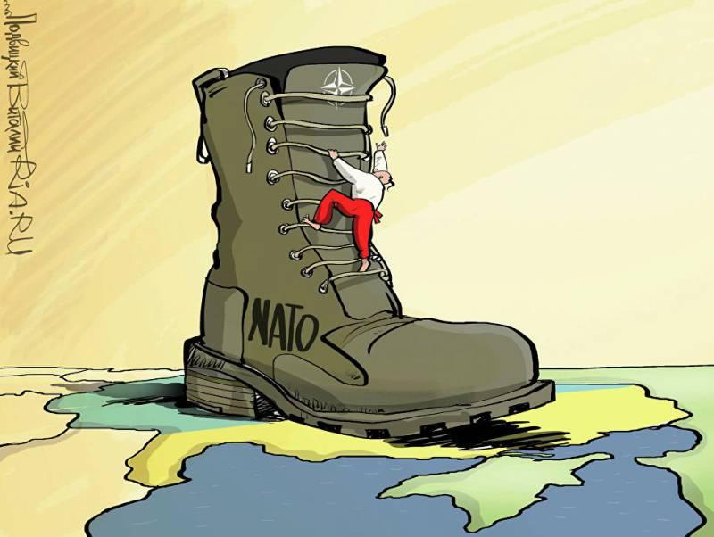 Бывший президент Польши посоветовал Киеву «отказаться от мечты стать членом НАТО»