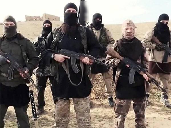 Пентагон: Около 200 боевиков ИГИЛ сдались американской коалиции в Сирии