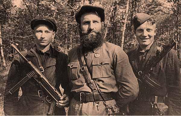 Взаимодействие партизан Черниговщины с Красной Армией