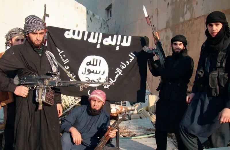 Они возвращаются. Эксперты Совбеза ООН о боевиках-исламистах
