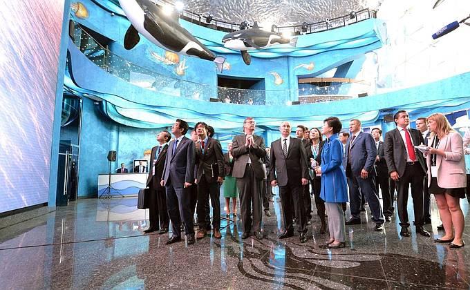 ВЭФ: Энергетическое суперкольцо АТР и возможная ЗСТ с Южной Кореей