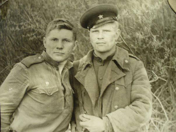 Вил Кудревич - воин и целитель
