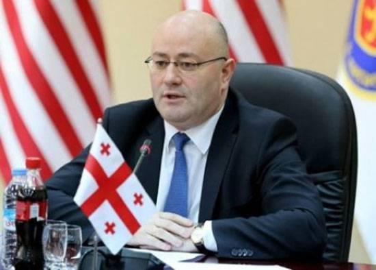 СМИ: Глава МО Грузии высказался против создания в стране военно-морских сил