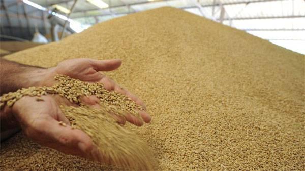 Рекордный урожай зерновых в России. Уже и минусы нашли...