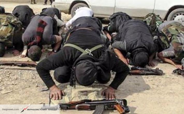 Очередное задержание террористической группы в Москве и Петербурге как повод задуматься
