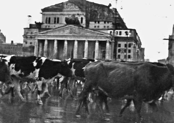Диссертация по эвакуации в годы Великой Отечественной войны