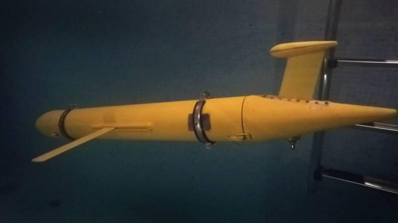 ВМФ РФ получит новый автономный подводный беспилотник