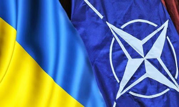 """""""Вопрос о вступлении Украины не стоит на повестке НАТО"""""""