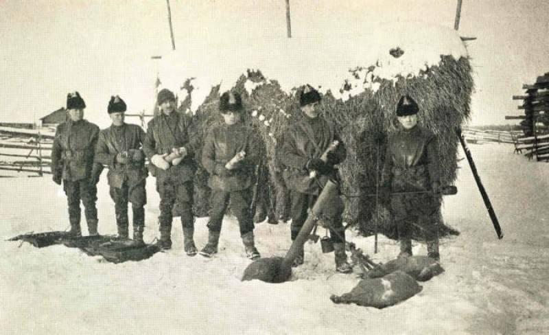 """""""Ihm wurde im Norden ein Befehl erteilt."""" Shenkursk Operation 1919 g."""