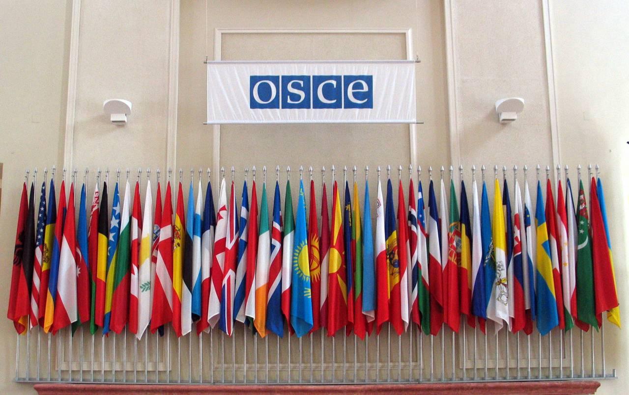 В государственной думе сообщили опонимании странами ОБСЕ неизменности статуса Крыма