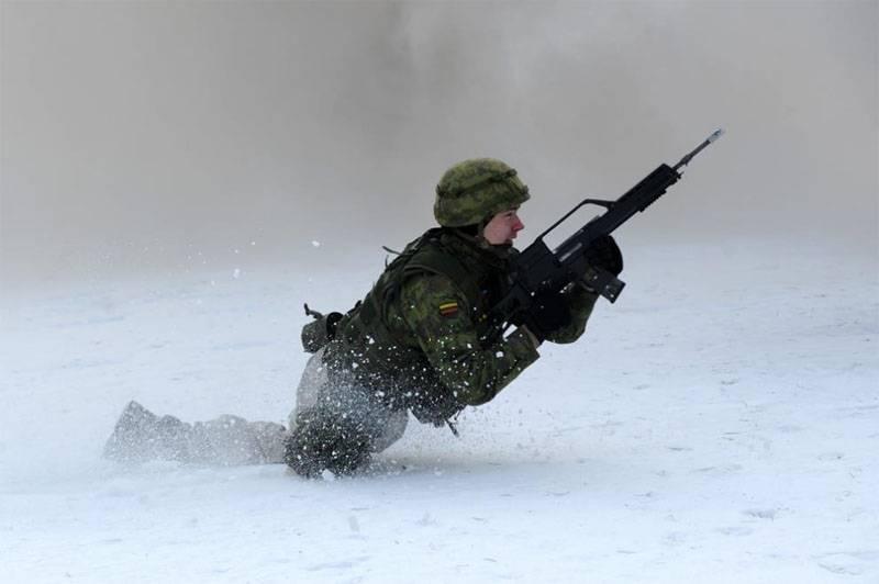 Литовская армия готова участвовать в военных операциях объединённых сил ЕС