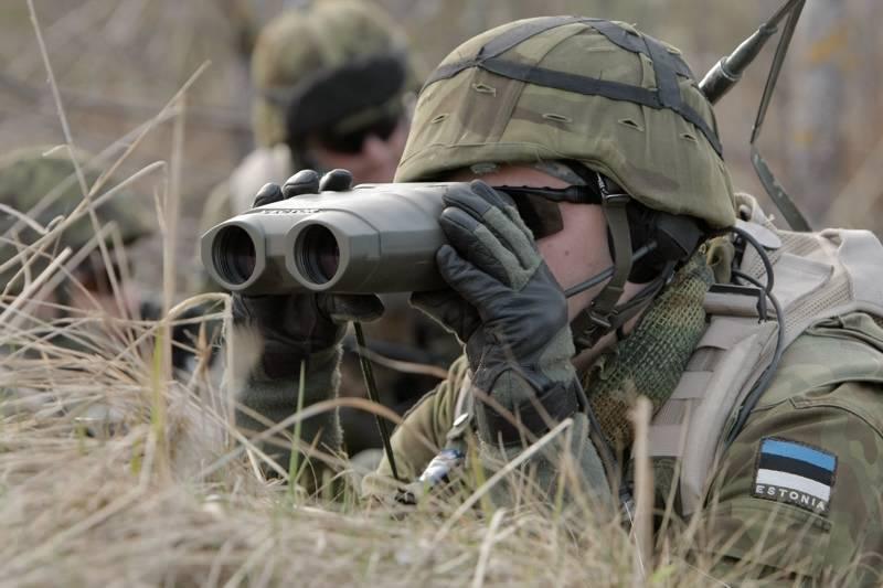 Comenzaron los ejercicios conjuntos de las fuerzas armadas de Estonia y las unidades del ejército de los Estados Unidos.