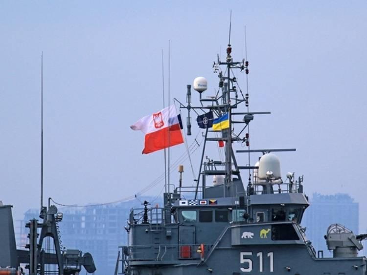 МО Украины: совместные с НАТО тренировки укрепили региональную безопасность