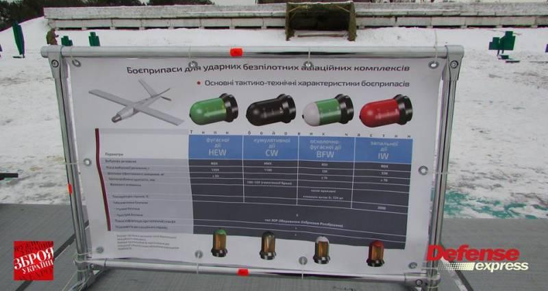 Проект ударно-розвідувального безпілотного комплексу «Сокіл» (Україна / Польща), фото-5