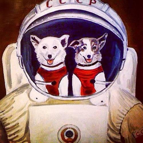 Задолго до Гагарина. Собаки-космонавты