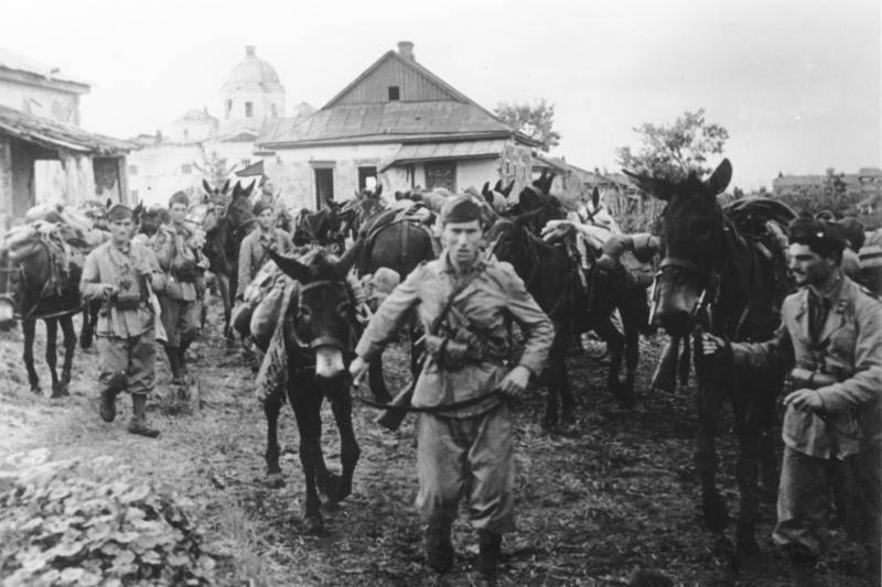 Итальянская кавалерия в донских степях