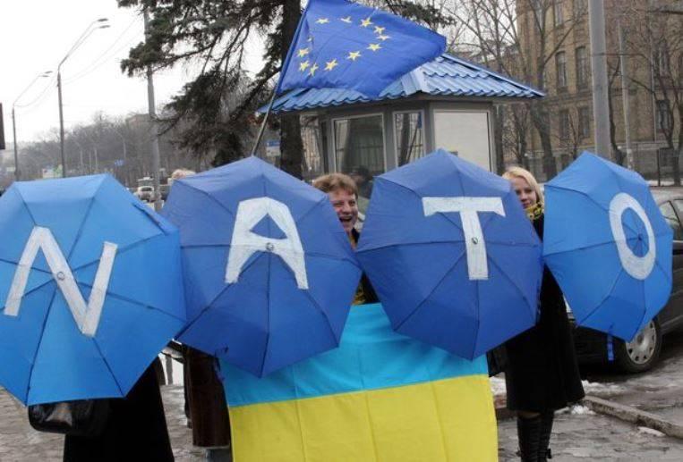 НАТО не рассматривает вопрос о принятии в свои ряды Украины