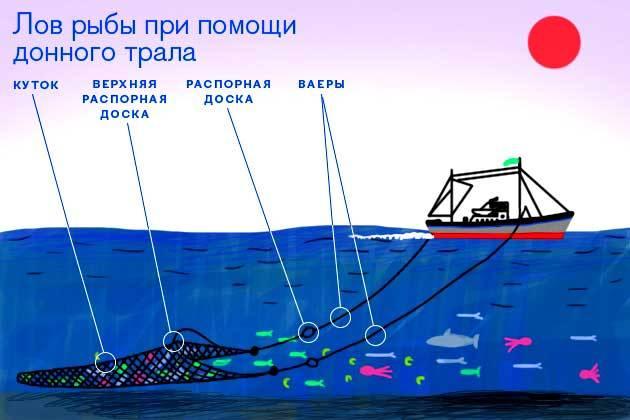 использование плавсредств для рыбалки