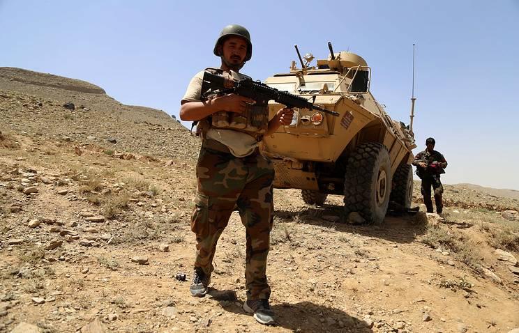 Афганские силовики освободили от террористов пещерный комплекс Тора-Бора