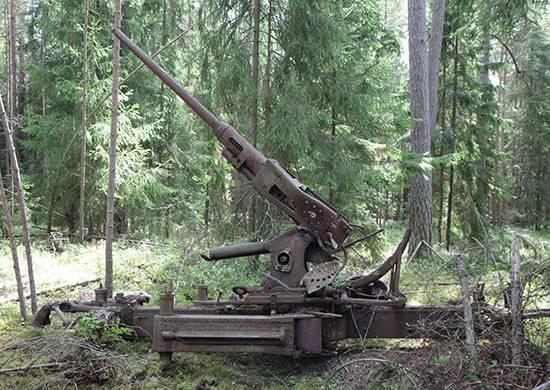 Экспедиция МО РФ обнаружила в Финском заливе боевую технику вермахта