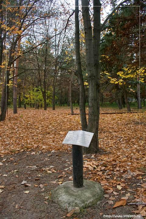Так какой парк уничтожили в Волгограде?