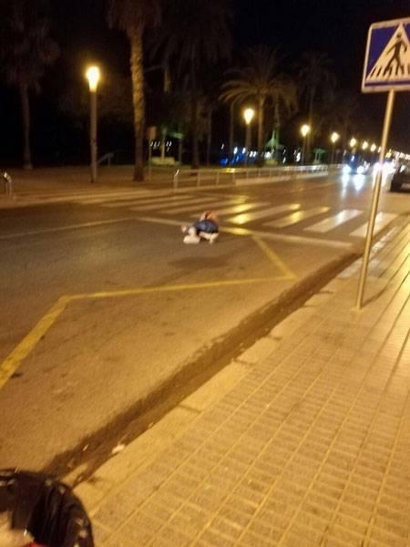 카탈로니아 캄 브릴에서 5 명의 테러리스트 제거