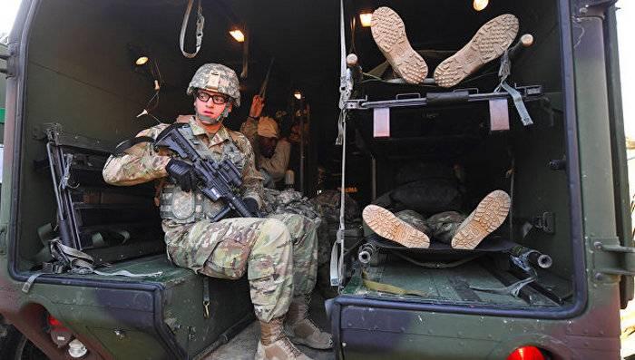 В Южной Корее осы сорвали военные учения