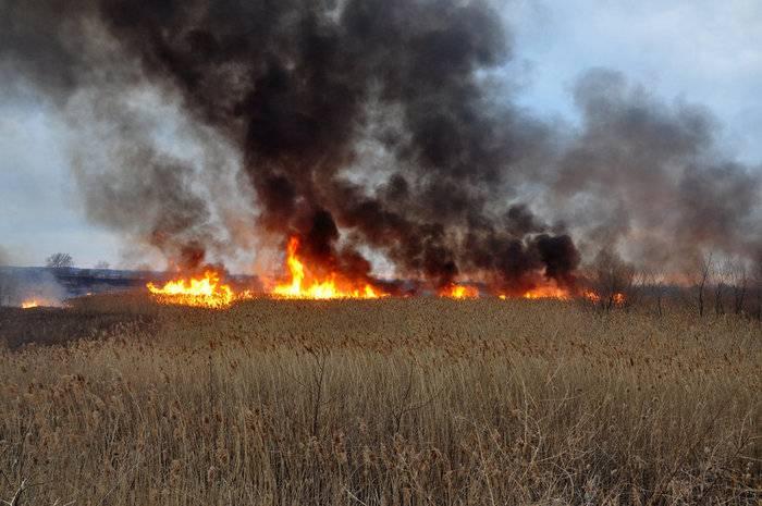 Киев обвинил ополченцев в использовании тактики выжженной земли