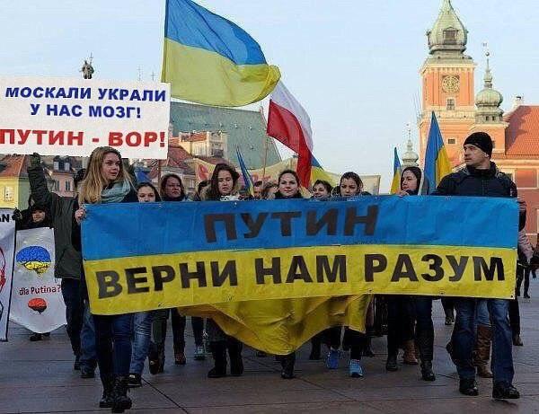 Россия Новая - Новости Информация Аналитика