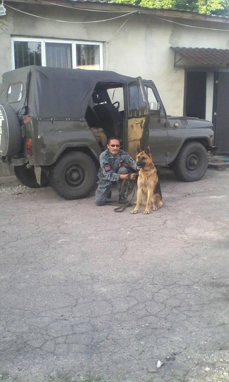 «На Донбассе на десять лет работы». Интервью с российским кинологом-добровольцем