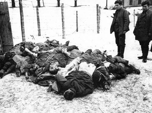 Os alemães, digamos, estupraram?