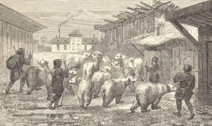 Россия глазами иностранцев: 12 зарисовок европейских туристов, побывавших в России в середине 19-го века