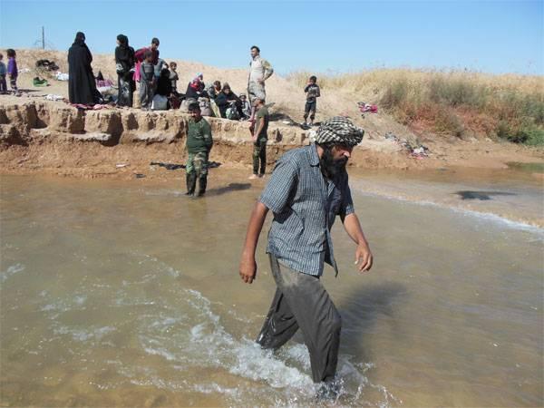 """Курдские чиновники заявили о """"массовых убийствах"""" в Киркуке"""