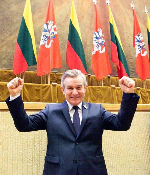 ВСейме Литвы представили «План Маршалла для Украины»
